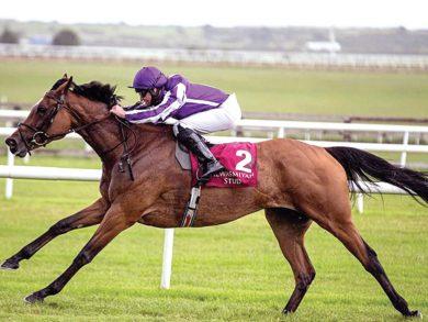 Photo of الفرس «ماجيكال» تتوّج في أيرلندا