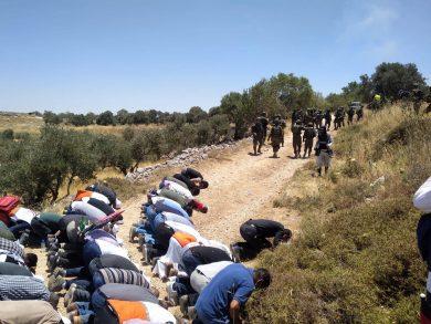 "Photo of الاحتلال يقمع مشاركين بصلاة الجمعة فوق أراض مهددة بالاستيلاء عليها شمال ""نابلس"""