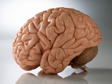 Photo of العدوى البسيطة تضر الدماغ