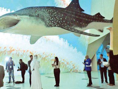 Photo of متاحف قطر تعلن عن فعاليات فبراير