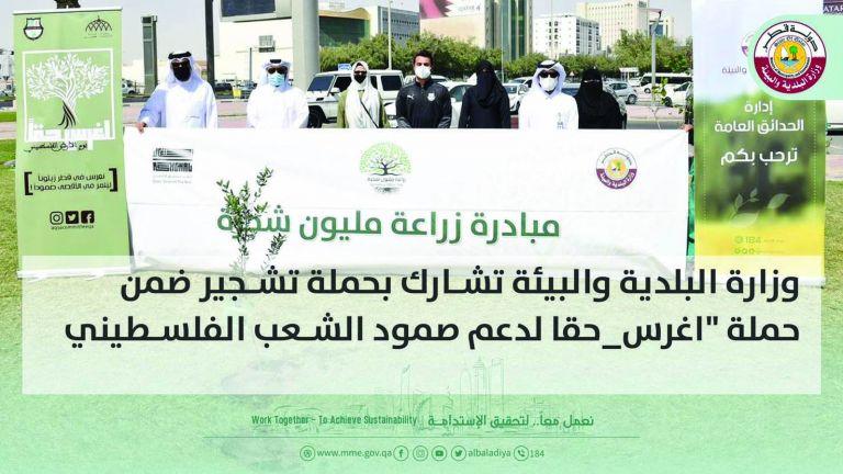 Photo of غرس 250 شتلة زيتون للتضامن مع الشعب الفلسطيني