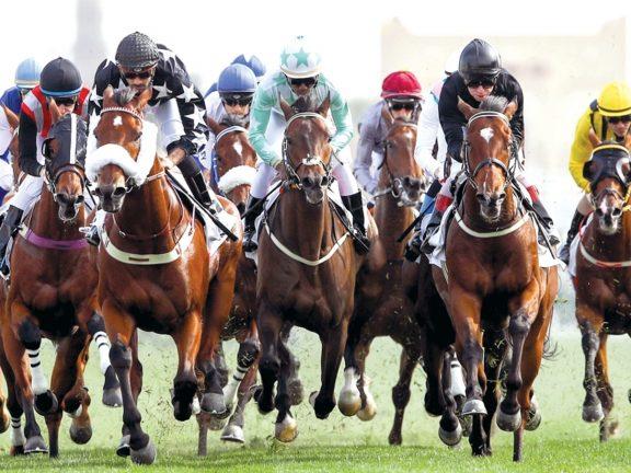 Photo of نادي الفروسية جاهز لتنظيم سباق الشيخ جوعان بن حمد