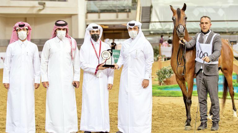 Photo of إثارة كبيرة في بطولة جمال الخيل