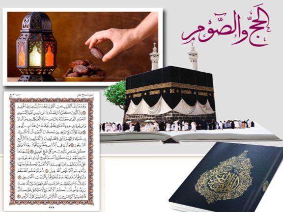 Photo of تشريع الحج والصوم.. وبعض أحكامهما في ظلال القرآن