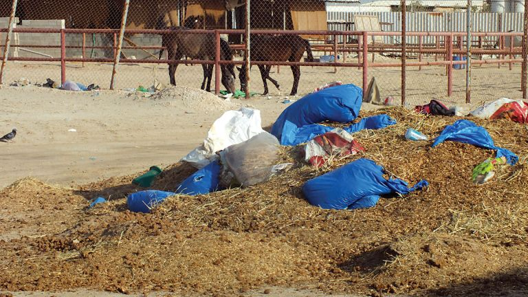 Photo of انتشار القمامة بمنطقة الإسطبلات بسيلين