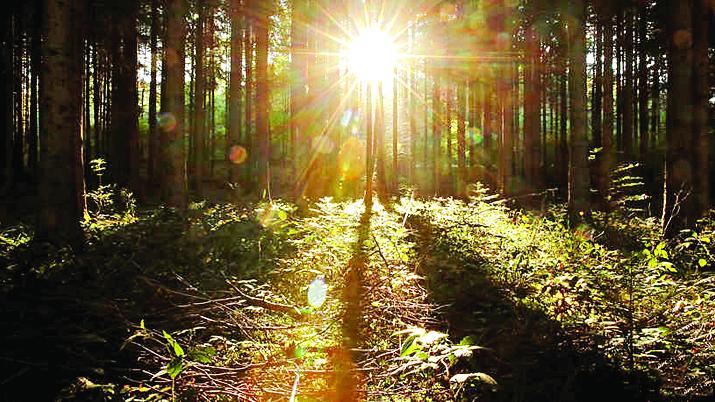 Photo of دراسة: التعرض لأشعة الشمس يقلل خطر الوفاة بكورونا