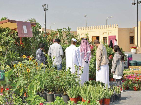 Photo of «محاصيل» يدعم المنتج الزراعي والغذائي المحلي