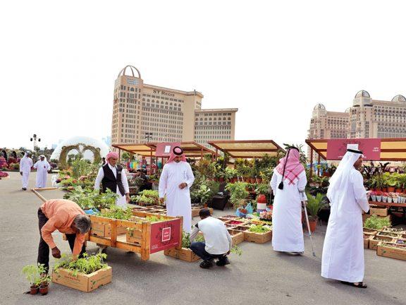 Photo of مهرجان محاصيل يستقطب هواة الزراعة المنزلية