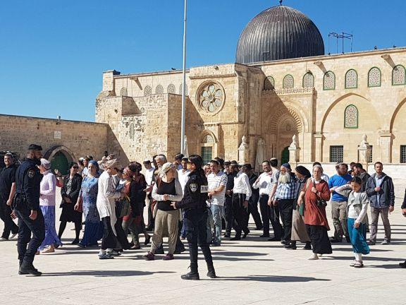 Photo of عشرات المستوطنين يقتحمون المسجد الأقصى المبارك