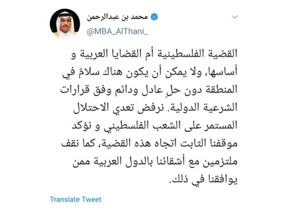 Photo of وزير الخارجية: فلسطين أم القضايا العربية