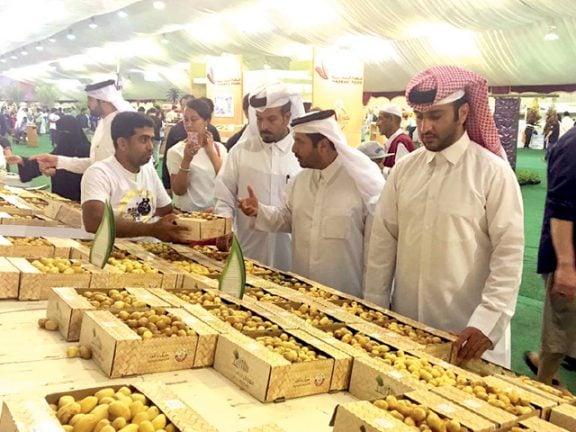 Photo of 13 طناً حصيلة مبيعات سابع أيام مهرجان الرطب