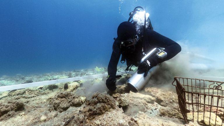 Photo of اكتشاف مستوطنة عمرها 5 آلاف عام في كرواتيا