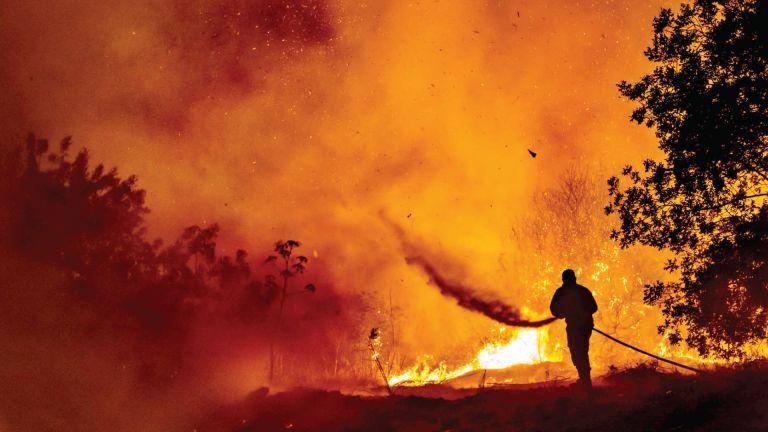 Photo of 4 قتلى بحريق غابات في قبرص