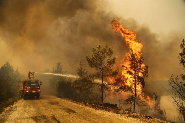 Photo of الرئيس التركي يعلن السيطرة على معظم حرائق الغابات في بلاده