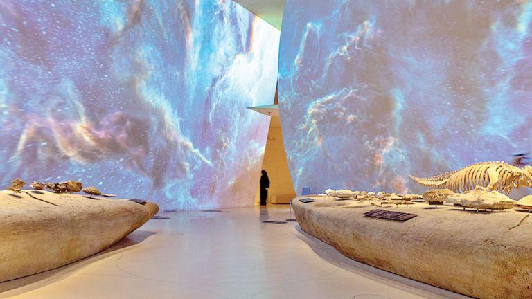 Photo of متاحف قطر تتواصل مع الجمهور رقميًا