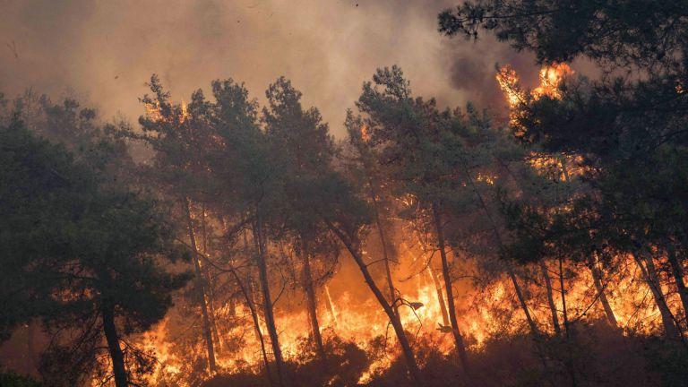 Photo of تركيا تكافح الحرائق لليوم السابع على التوالي