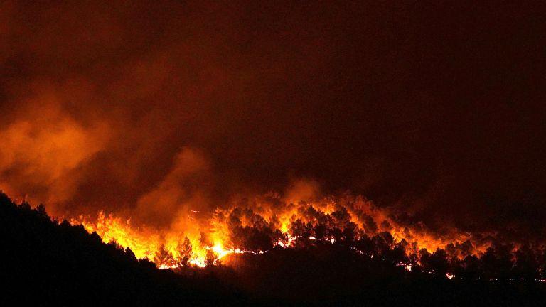 Photo of 500 حريق في إيطاليا بسبب موجات الحر