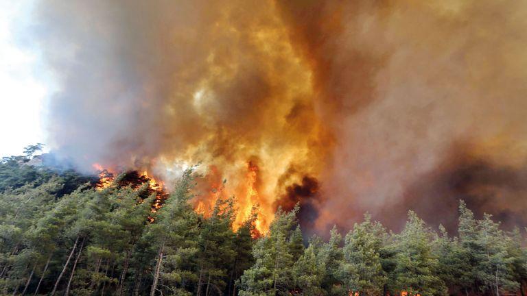Photo of دخان حرائق روسيا يصل القطب الشمالي
