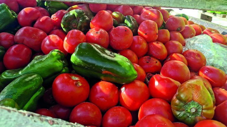 Photo of تقليل الفاقد من الإنتاج الزراعي بنسبة 20%